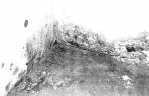 Wieso Entsteht Eine Feuchte Kellerwohnung Mit Schimmmelpilze
