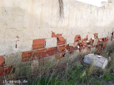 Feuchte Mauer auf Djerba