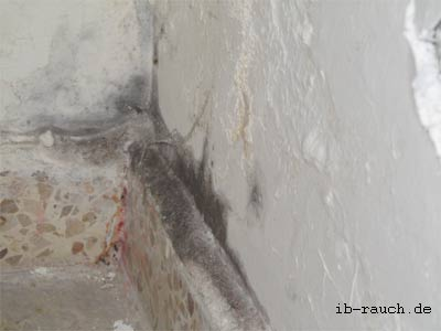 Mold on the wall surface