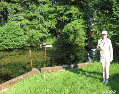 Ein natürlicher Schwimmteich im eignen Grundstück