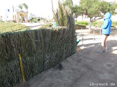 Zaun aus Palmenblätter