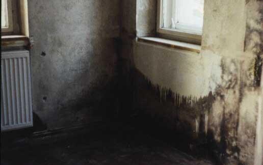 Wo kommen schimmelpilze in den wohnungen vor - Schimmel im schlafzimmer hinter der heizung ...